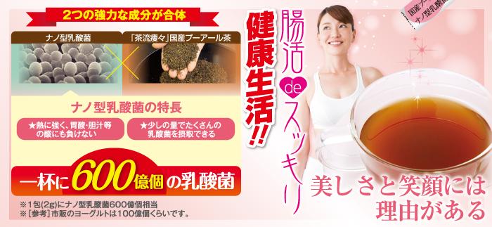 乳酸菌入プーアール茶