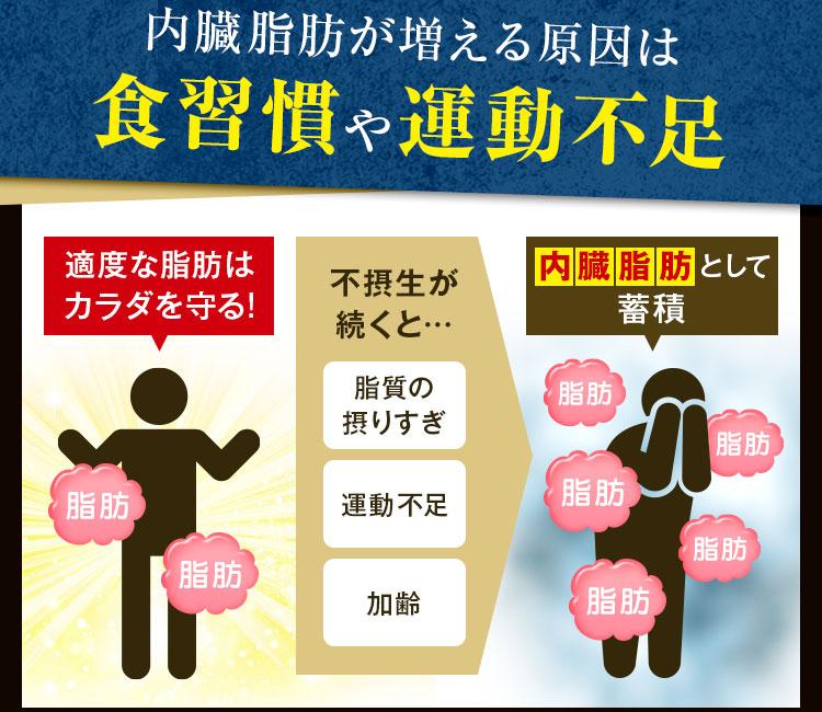 内臓脂肪が増える原因は食習慣や運動不足